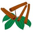 cinnamon sticks spice icon isolated vector image vector image