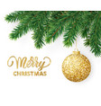 greeting card with fir tree branches hanging vector image vector image