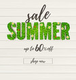 summer sale handwriting text of ad banner on vector image