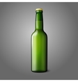 Blank green realistic beer bottle isolated on grey vector image vector image