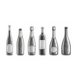 champagne and wine bottles vector image vector image