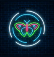 colorful batterfly glowing neon sign in round vector image vector image