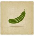 cucumber symbol vector image vector image