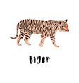 cute tiger cartoon animal vector image