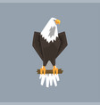 north american bald eagle character sitting on a vector image vector image