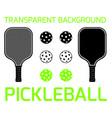 pickleball sport equipment vector image vector image