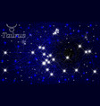 the constellation of taurus in the starry blue sky vector image