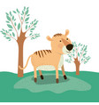 tiger animal caricature in forest landscape vector image