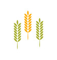agriculture wheat logo template icon vector image vector image