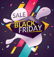 Black friday Big sales vector image vector image