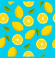 citrus seamless pattern hand drawn lemon vector image vector image
