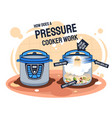 how does a pressure cooker work and prepares food vector image vector image