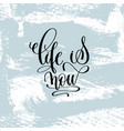 life is now hand lettering inscription vector image vector image