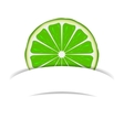 Lime with paper banner vector image vector image