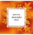 Stock card template for autumn sale vector image vector image