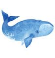 bowhead whale vector image