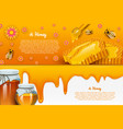 honey or natural farm product beekeeping or vector image vector image