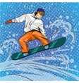 Man snowboarding in mountains vector image