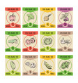 vegetables on price cards for vector image vector image