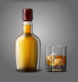 Blank realistic bottle with glass of whiskey and vector image vector image