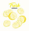 fresh lemons sketch vector image