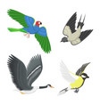 Set of different flying birds