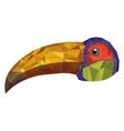 toucan abstract design vector image