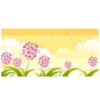 allium flower against sky
