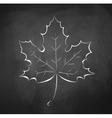Autumn leaf vector image