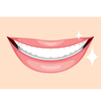 Beautiful Mouth Smile And Teeth vector image
