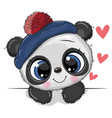 cute panda on a white background vector image
