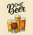 glass with different types beer - lager ale vector image vector image
