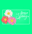 hello spring banner hand drawn lettering vector image vector image