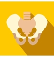 Human pelvis flat icon with shadow vector image