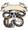 skull and snake template with ribbon vector image vector image