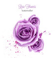 watercolor violet rose isolated card vector image vector image