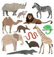 african animals set elephant giraffe buffalo vector image vector image