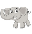 an elephant vector image