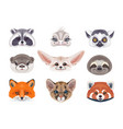 funny wild animals faces on white vector image vector image