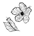 hibiscus flower in tattoo style black and white vector image vector image