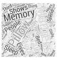Memory Foam Mattress Pillows Word Cloud Concept vector image vector image