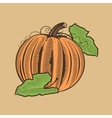Pumpkin in vintage style Colored vector image vector image