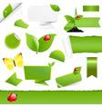 Big Eco Design Elements vector image vector image