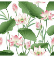 botanical seamless pattern with pink lotus vector image vector image