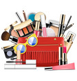 cosmetic bag vector image vector image