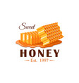 flows honey with honeycomb vector image vector image