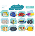 freshwater aquarium fish breeds icon set flat vector image vector image