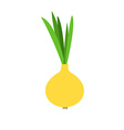 Spring Onion vector image