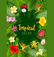 summer tropical frame design vector image vector image
