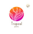 tropical floral herb vector image vector image